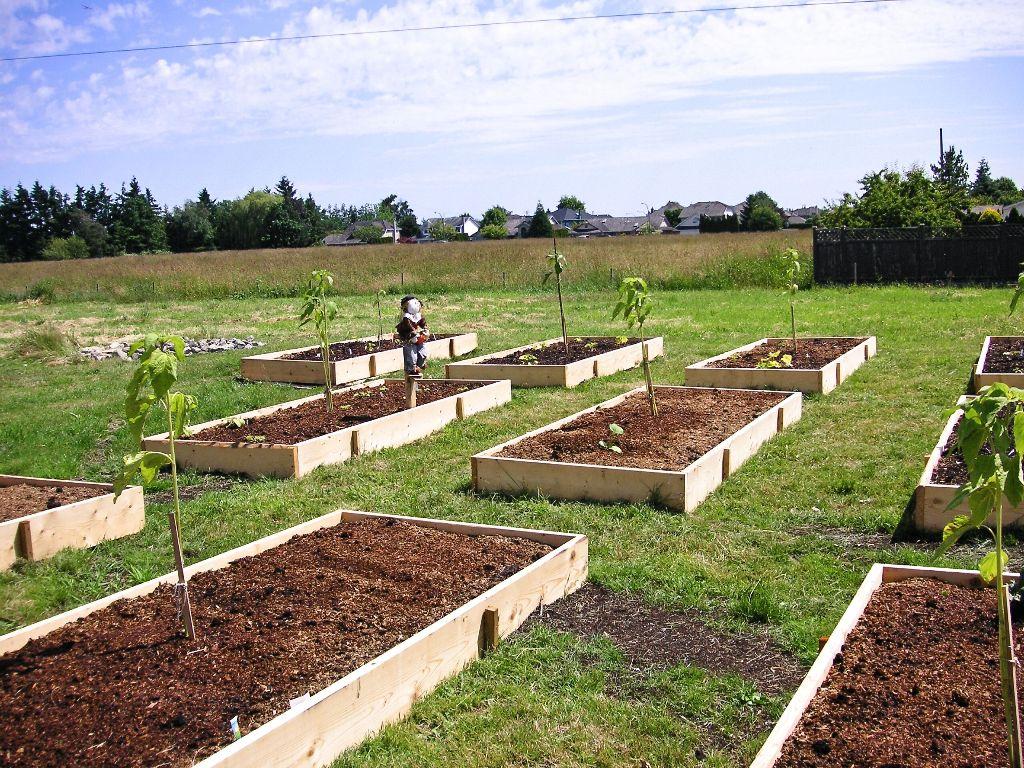 Different Soil Affect Microclimates