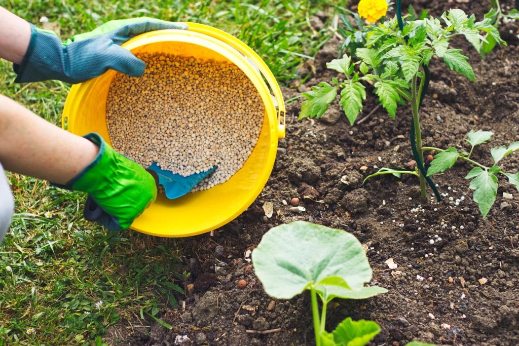 Fertilizer Side-dressing Information