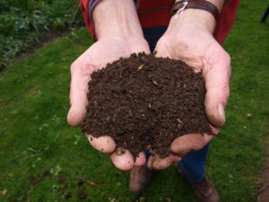How Compost Helps Your Soil: Learn How to Make Compost