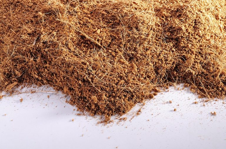 How To Use Coco Peat