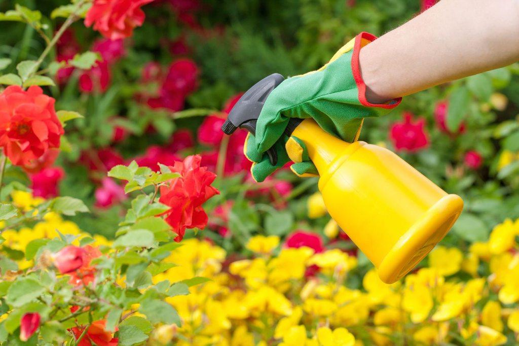 How to Fumigate Garden
