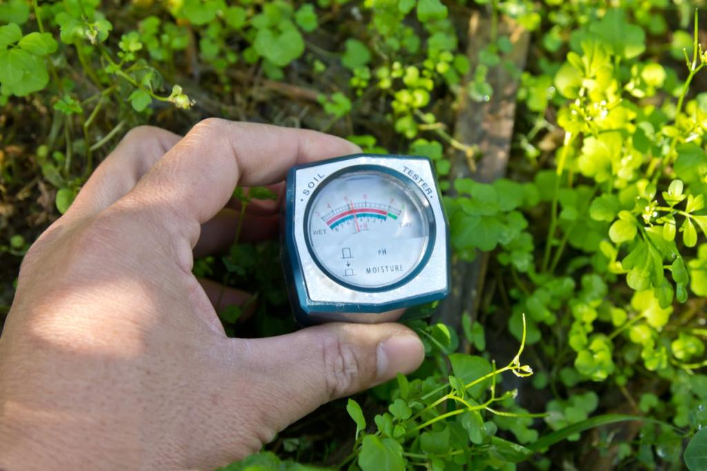 Measuring Soil Moisture