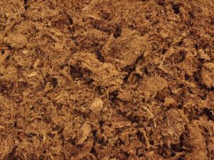 Peat Moss Alternatives: What You Can Use as Alternatives