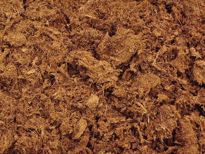 Peat Moss Alternatives