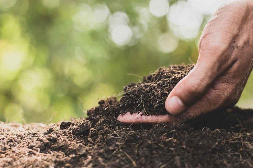 Soil Preparation for Fumigation