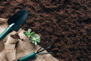 Topsoil VS Garden Soil – What's the Difference?