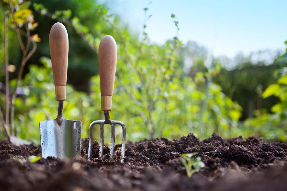 How to Warm Garden Soil