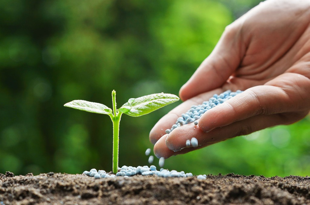 What is Slow Release Fertilizer?