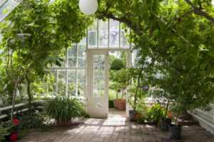 Beer Gardens Can Help Plants Thrive