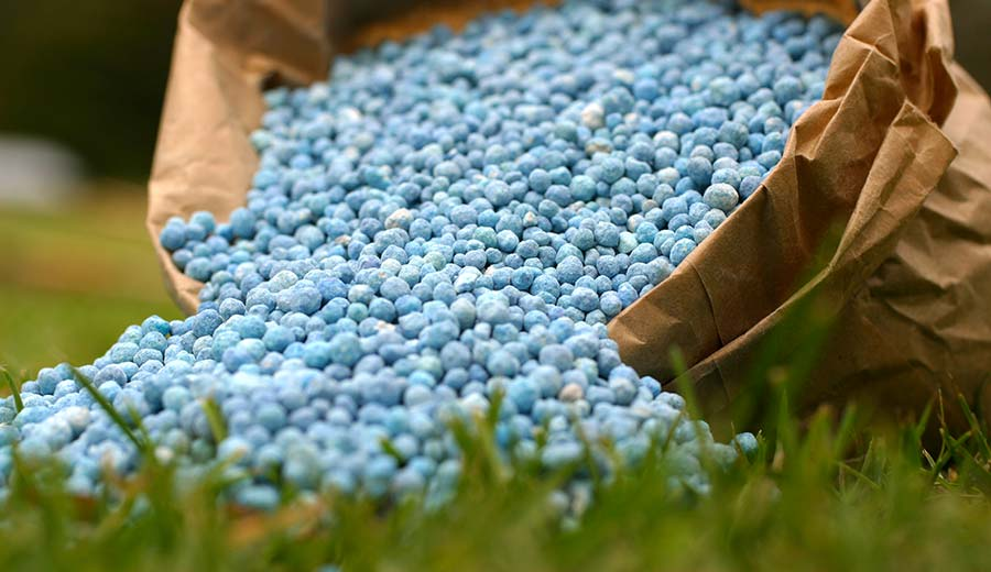 How to Apply Ammonium Nitrate as Fertilizer
