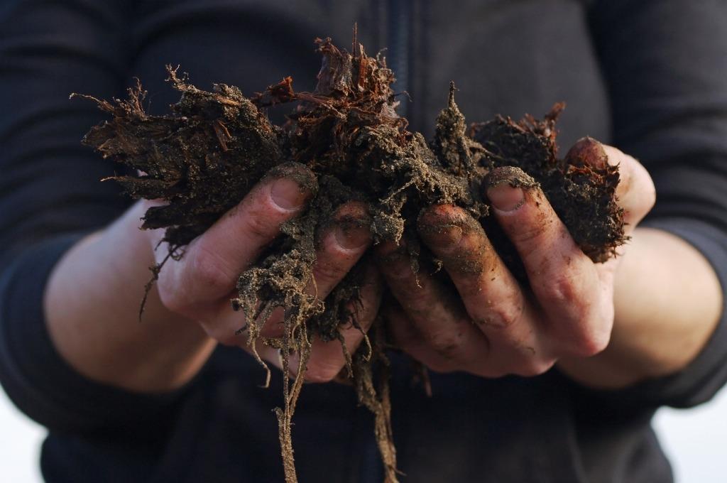 Positive Impact on Soil Tilling