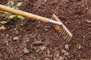 How Soil Compaction is Hurting Your Lawn