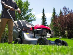 Honda HRN216VKA Gas Lawn Mower Review